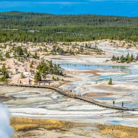 Yellowstone: Norris Geyser Basin