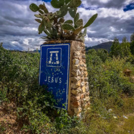 And we're off!